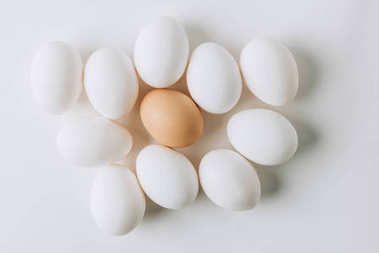 white eggs and one brown laying on white background