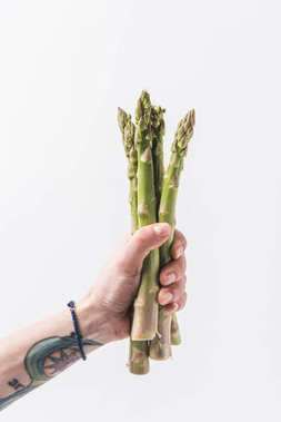 Hand holding green asparagus stalks isolated on white background