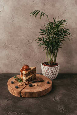 piece od delicious cake with berries on wooden board and green houseplant