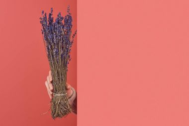 woman sticking out bouquet of lavender flowers behind wall on red