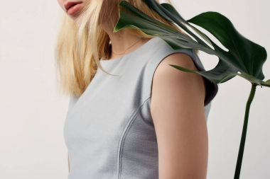 cropped shot of attractive young woman with monstera leaf on shoulder isolated on white