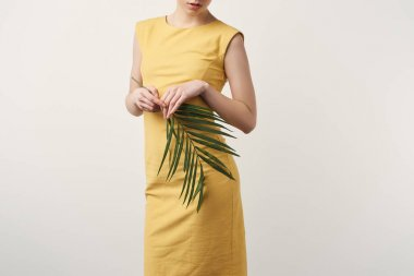 cropped shot of young woman in yellow dress with palm branch isolated on white