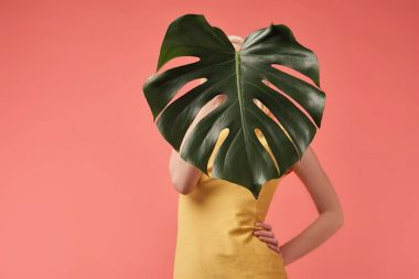 young woman covering face with monstera leaf isolated on red