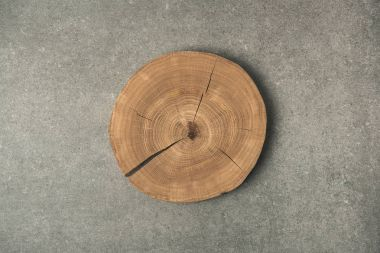 top view of wooden stump on grey concrete tabletop