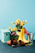 Photo close up view of arranged rubber boots with flowers, flowerpots, gardening tools, watering can and birdhouse on wooden tabletop on blue