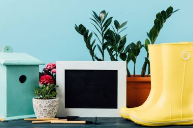 close up view of plants in flowerpots, rubber boots, birdhouse, gardening equipment and empty blackboard on wooden tabletop on blue