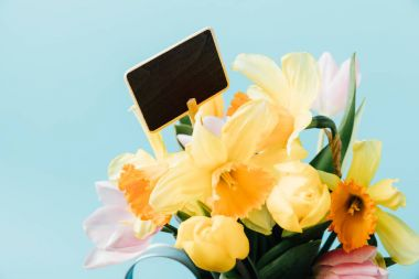 close up view of beautiful tulips, narcissus flowers and blank blackboard isolated on blue