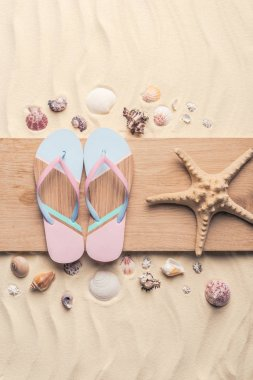 Flip flops and starfish with shells on light sand