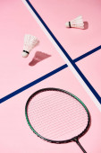 Fotografia Seppie Badminton e racchetta su sfondo rosa con linee blu