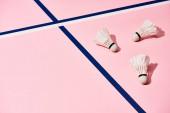 Federbälle mit Schatten auf rosa Oberfläche mit blauen und weißen Linien