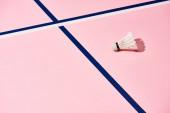 Fotografie Federball für Badminton auf rosa Fläche mit blauen und weißen Linien