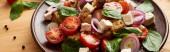 zblízka pohled na vynikající italský zeleninový salát panzanella podávané na talíři na dřevěném stole, panoramatický záběr