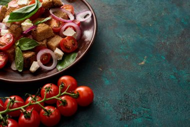 fresh Italian vegetable salad panzanella served on plate on table with tomatoes