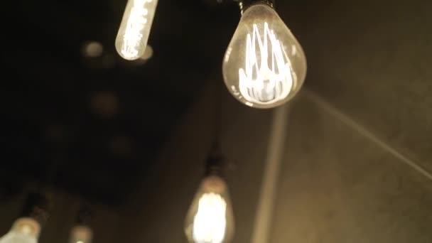 many light bulbs hang from the ceiling