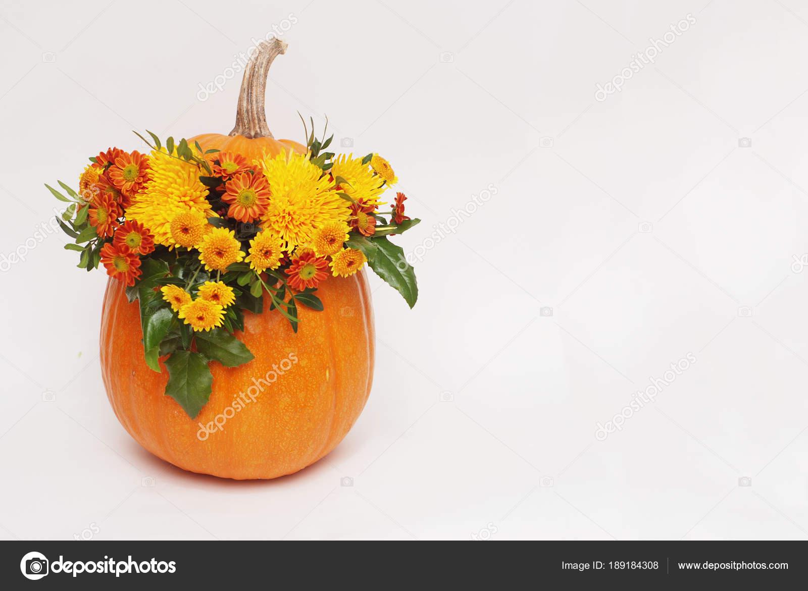 Otoño Arreglos Florales En Florero De Calabaza Sobre Fondo