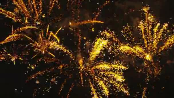 multicolored fireworks exploding