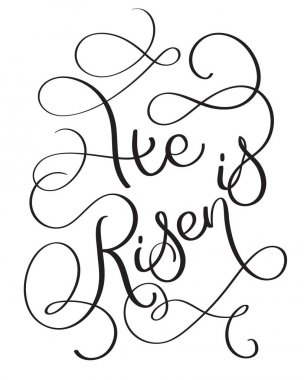 He is Risen text on white background. Calligraphy lettering Vector illustration EPS10