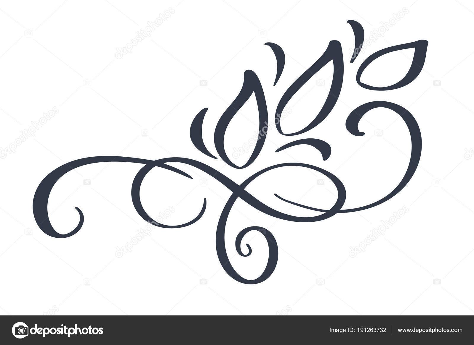 Hand Drawn Border Flourish Separator Calligraphy Designer Elements Vector Vintage Wedding Illustration Isolated On White
