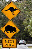 Photo Car pass a warning road sign to beware of Kangaroo and Wombat ne