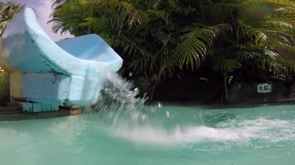Girl on a water slide down into a refreshing pool