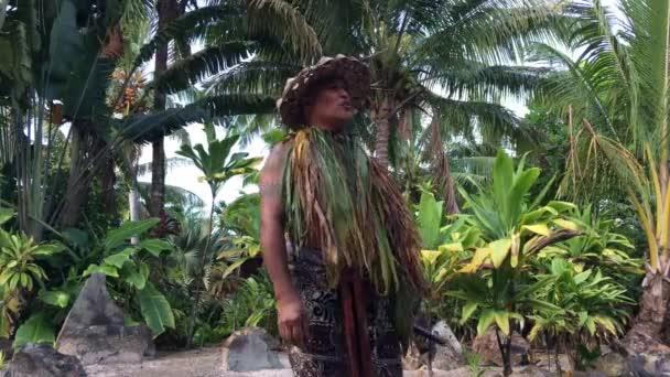Szakács Islander ember kifejti egy ősi Marae (Szent hely) a Rarotonga Cook-szigetek