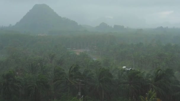 Rain in tropical rainforest. View on the mountain.