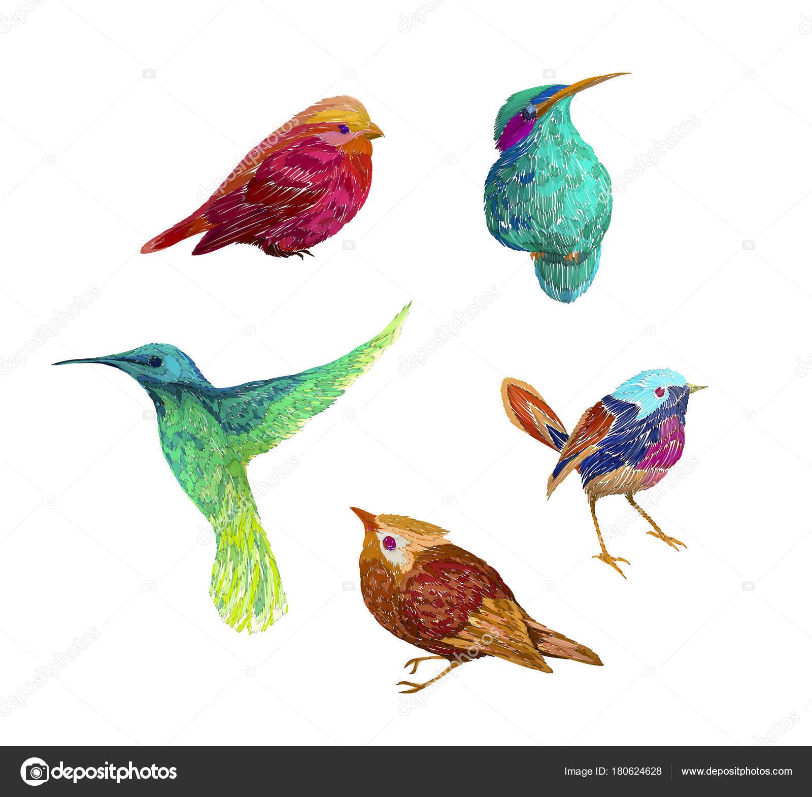 Modelo Vintage Con Aves Aislado Sobre Fondo Imitación Bordados ...