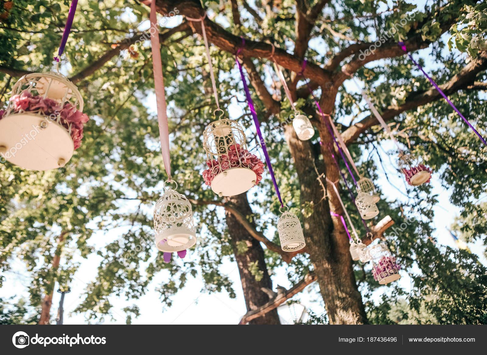Hochzeit Dekoration Mit Blumen In Kafigen Auf Einem Baum Stockfoto