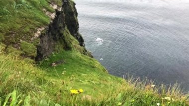 Looking down over the Cliffs of Moher in Ireland at the North Atlantic Ocean