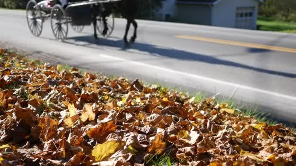 Amish kočár vůz jednotky po silnici v Pensylvánii na podzim