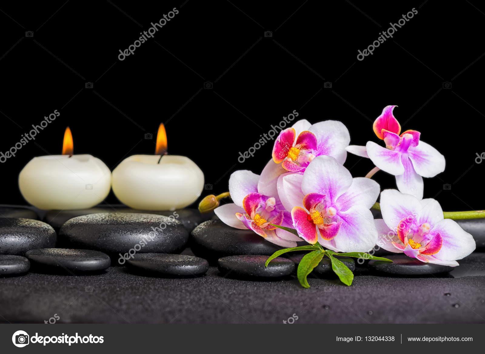 Decoration De Spa en ce qui concerne décoration de spa de violet orchidée phalaenopsis et bougies sur