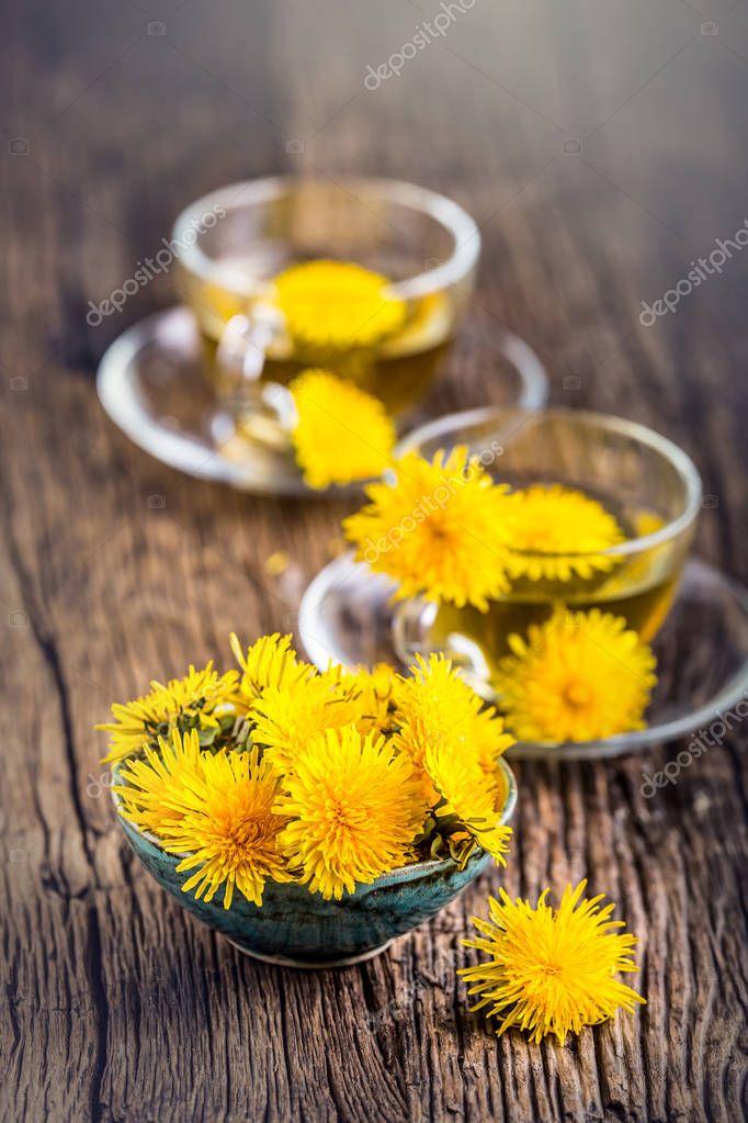 Dandelion Tea.Yellow dandelion flowers and tea cups