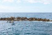 Fotografia barche e rocce