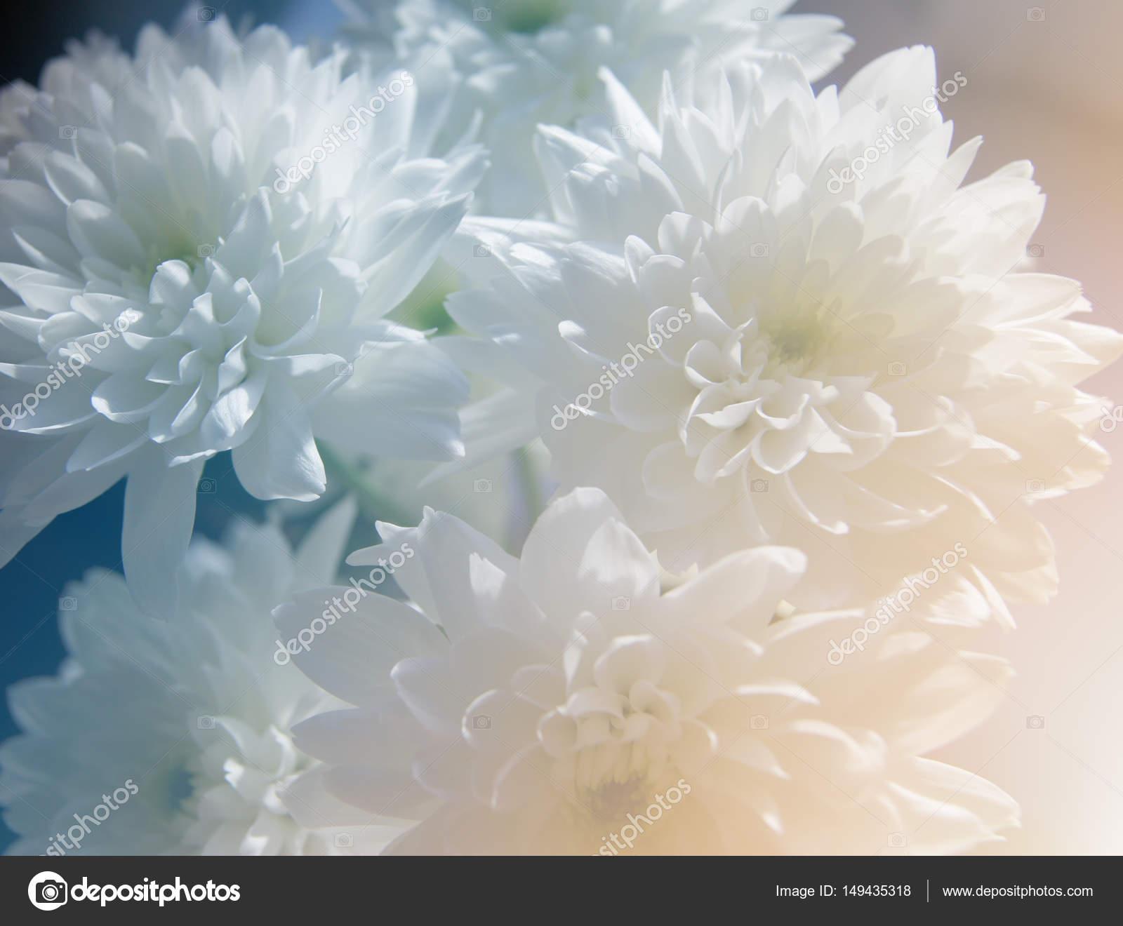 Маленький столик за углом - Том VII - Страница 31 Depositphotos_149435318-stock-photo-bouquet-of-chrysanthemums-flowers