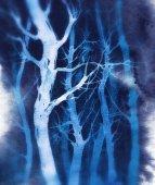 Fotografie Akvarelu rychle expresivní skica: zimní les