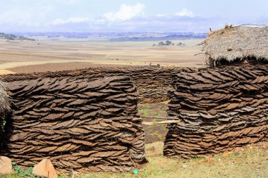 Corral of sundried cow dungs. Oromia-Ethiopia. 0527