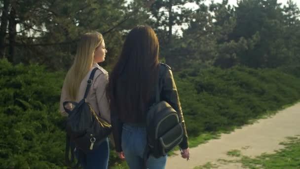 Elegant girls strolling in parkland at sunset