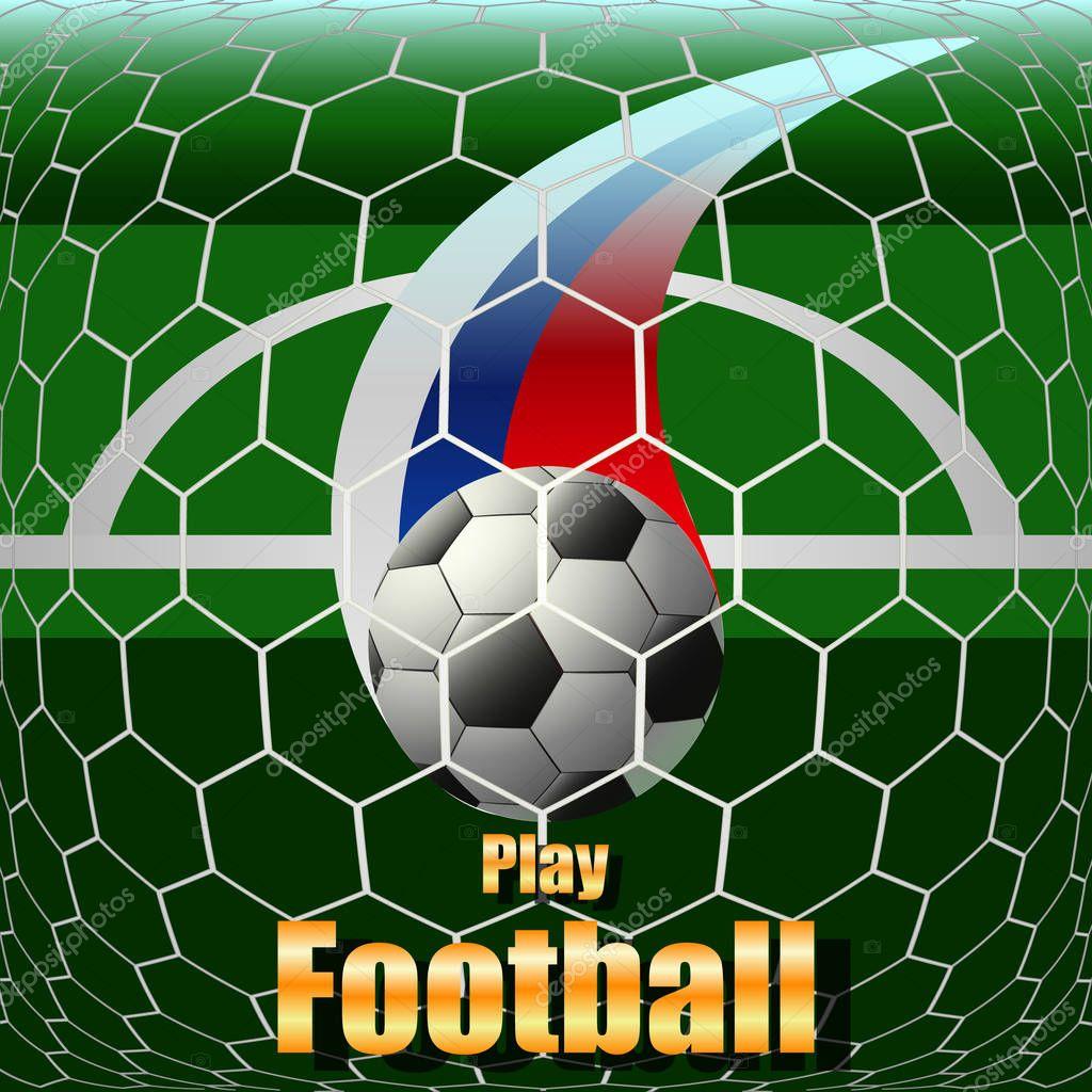 play football, soccer ball on the field, stadium
