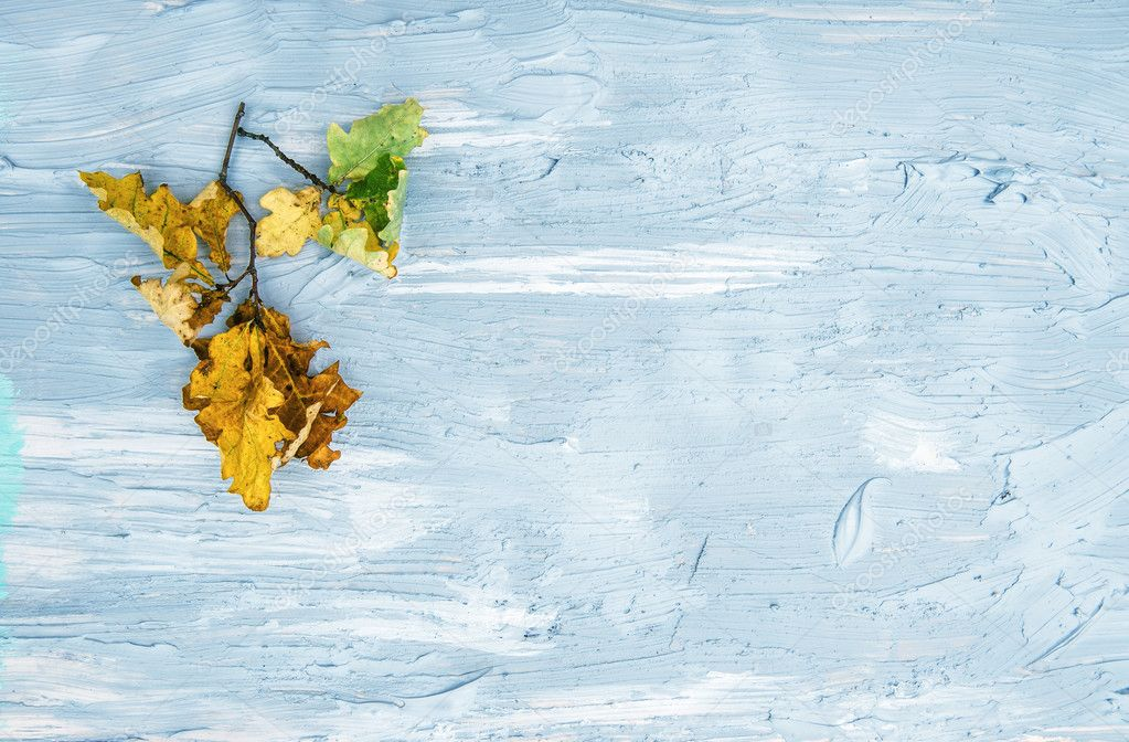 Yellow oak leaves rustic texture. Autumn minimal background