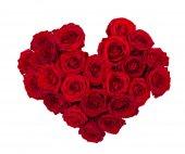 Červená růže květiny izolované na bílém pozadí