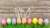 Fotografie Easter eggs cute bunny Funny decoration Happy Easter