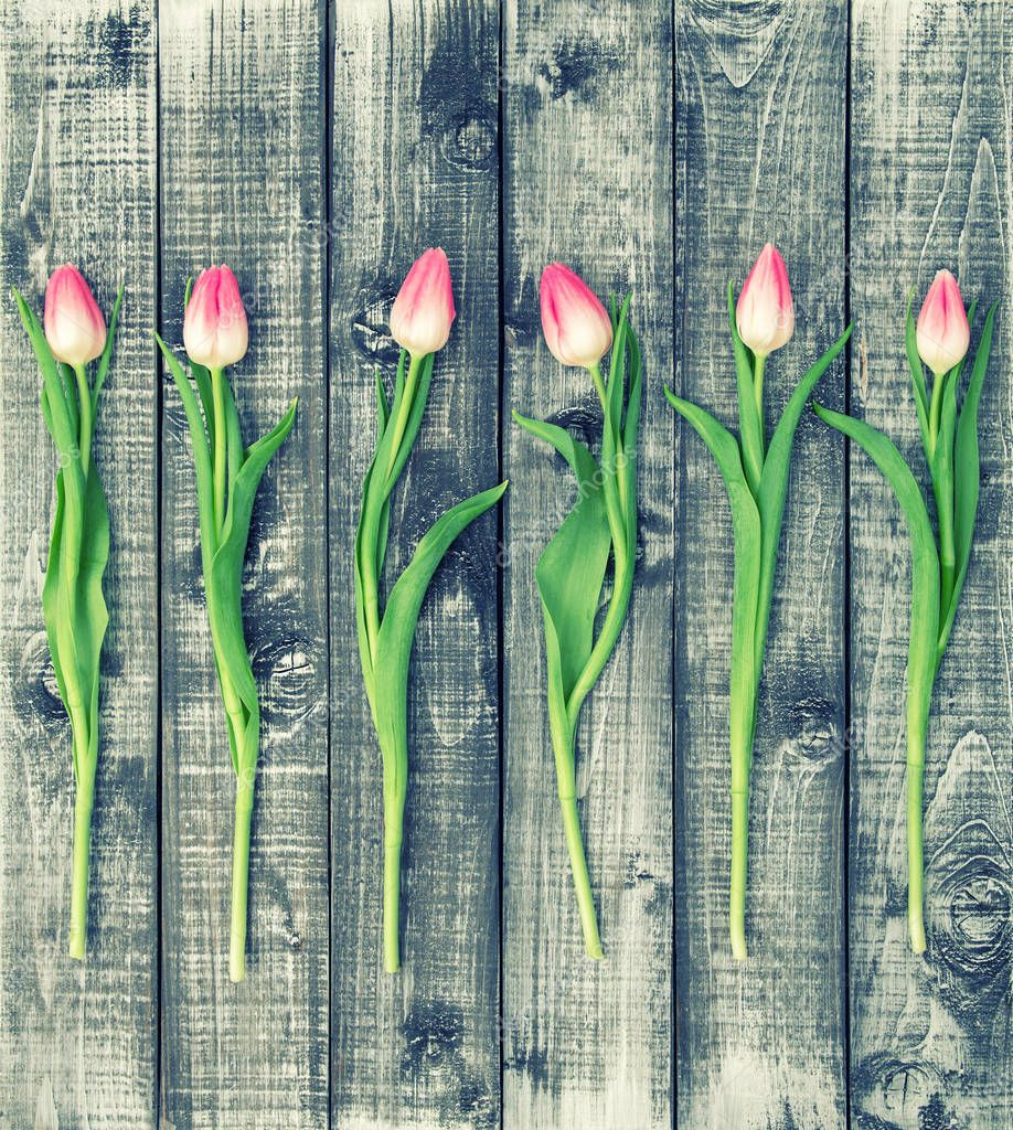 Floral flat lay Tulip flowers wooden background vintage