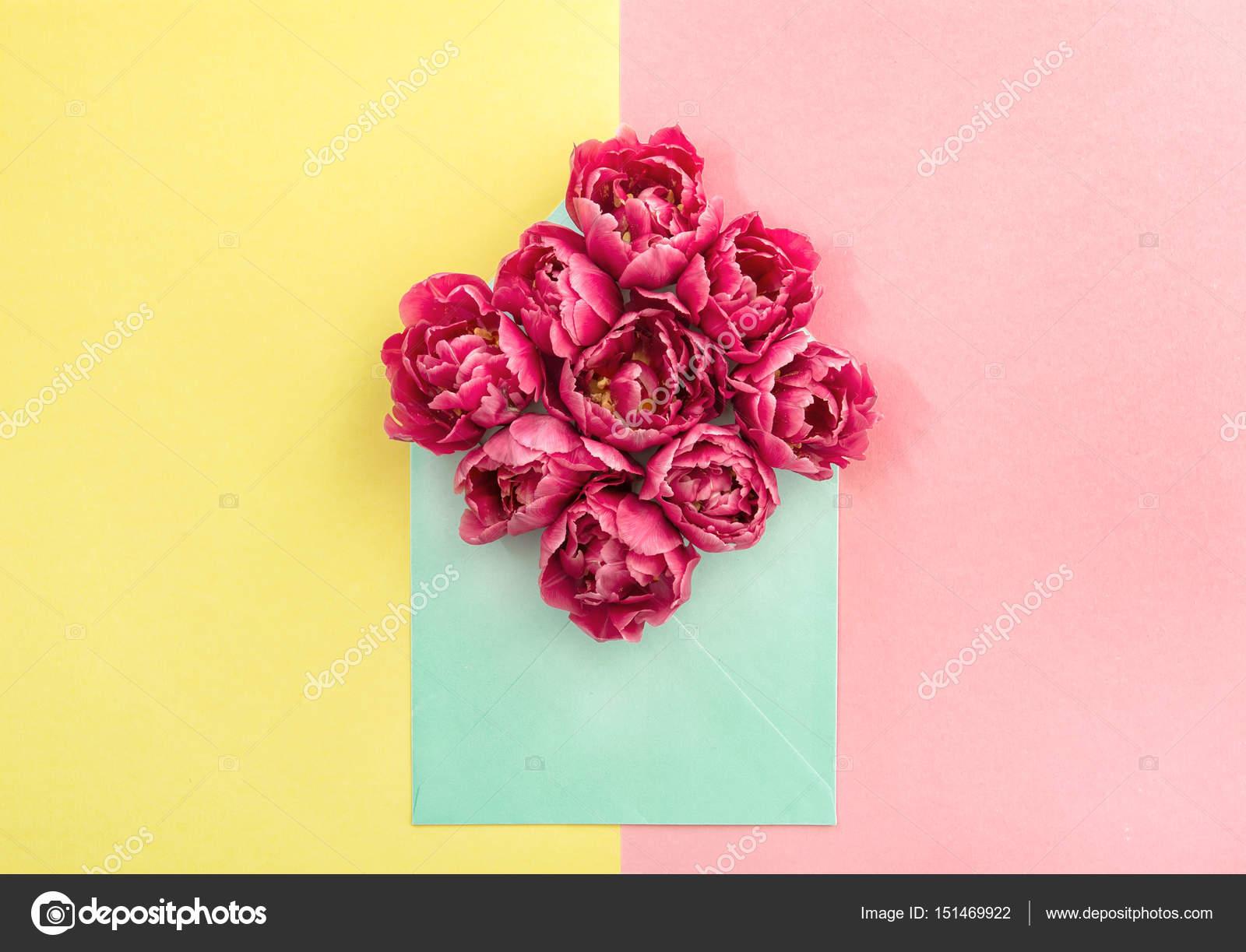 Tulpe Blumen Umschlag Rosa Blüten Gelbe Papier Stockfoto