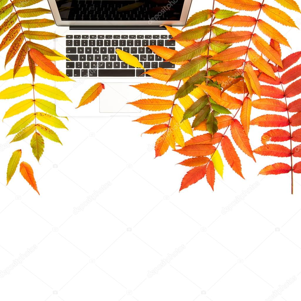 Autumn leaves notebook white background Office desk Flat lay