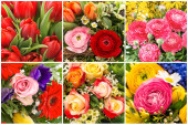 Csokor tavaszi virágok Tulipán rózsa ranunculus Virágos kollázs