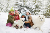 Fényképek Kutyák játszó gyerekek csoportja