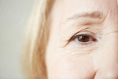 woman looking at camera