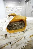 Fotografie Stoh papíru balení s suché mořské řasy s tím otevřené na vrcholu