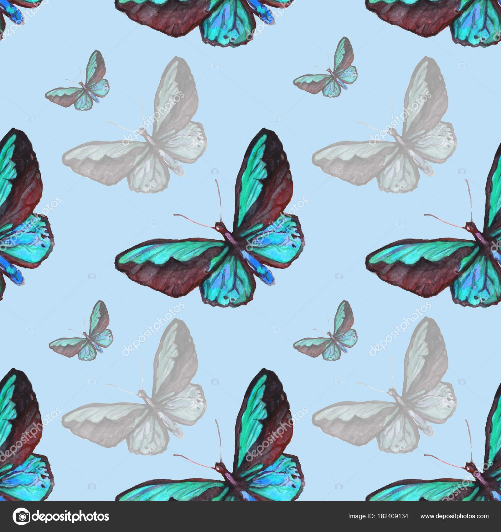 Dibujos Dibujo De Mariposas Pintadas Acuarela De Patrones Sin