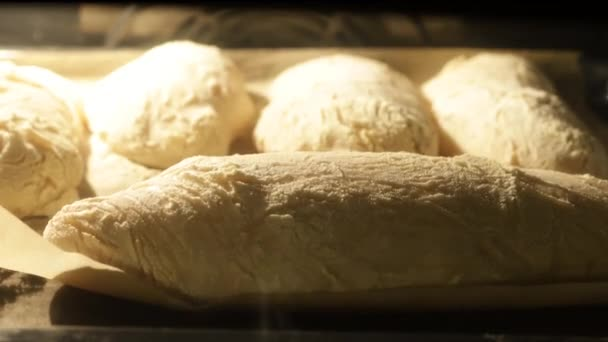 Loaves of bread baking in oven, time lapse video.